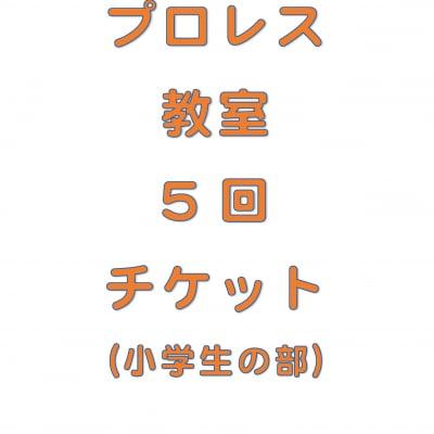 琉ドラプロレス教室【プロレス教室回数券】(小学生の部5回分)