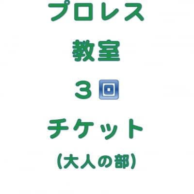 琉ドラプロレス教室【プロレス教室回数券】(大人の部3回分)