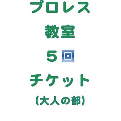 琉ドラプロレス教室【プロレス教室回数券】(大人の部5回分)