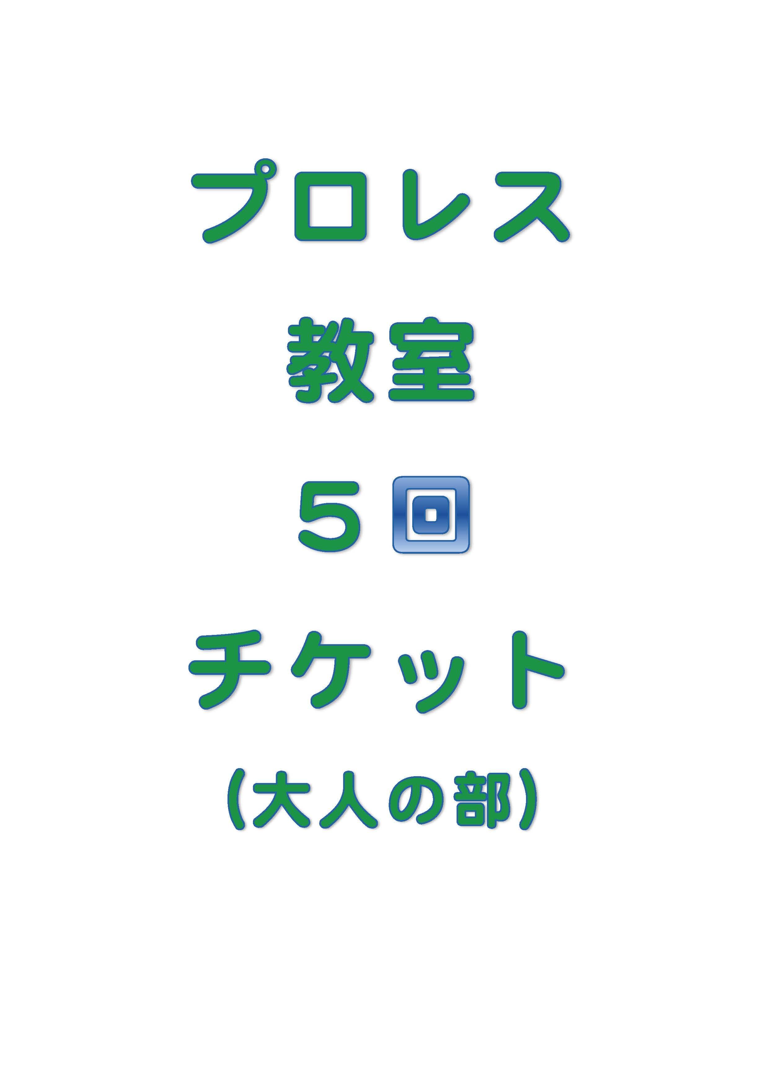 琉ドラプロレス教室【プロレス教室回数券】(大人の部5回分)のイメージその1