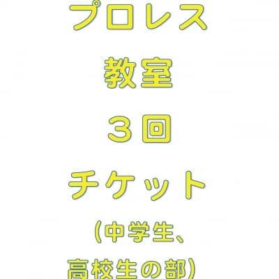 琉ドラプロレス教室【プロレス教室回数券】(中高生の部3回分)