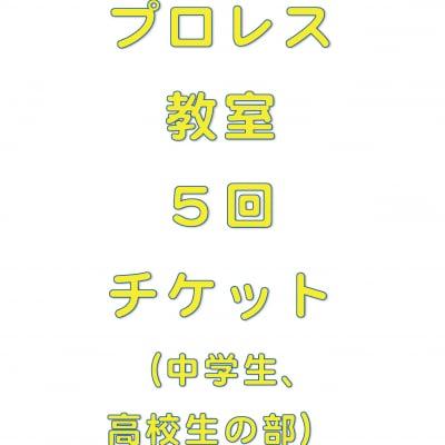 琉ドラプロレス教室【プロレス教室回数券】(中高生の部5回分)