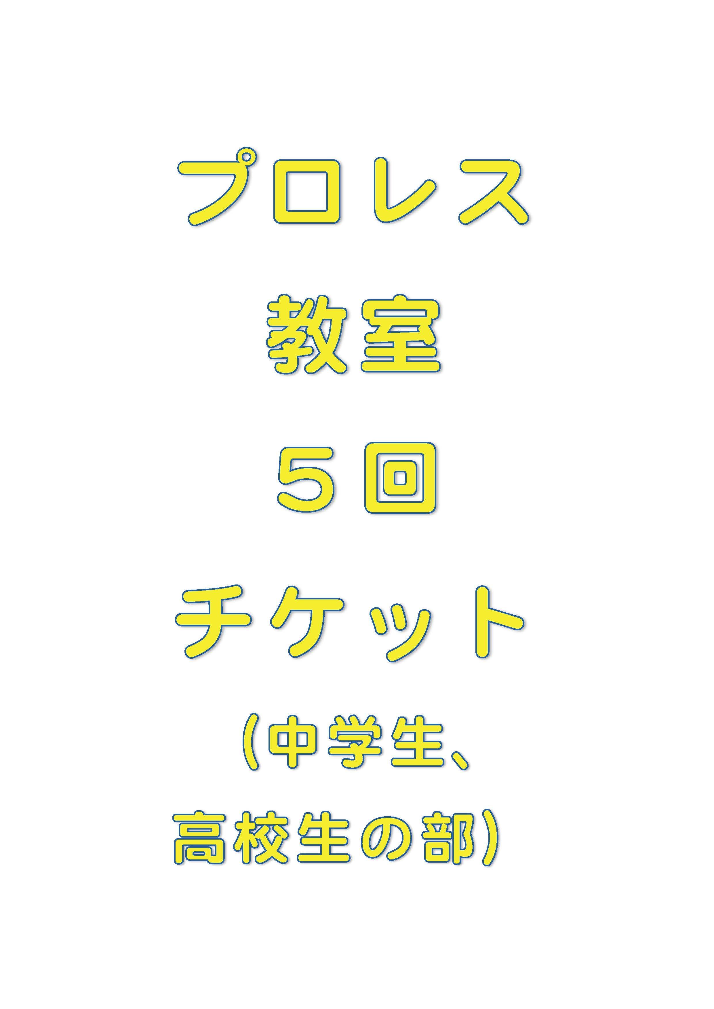 琉ドラプロレス教室【プロレス教室回数券】(中高生の部5回分)のイメージその1