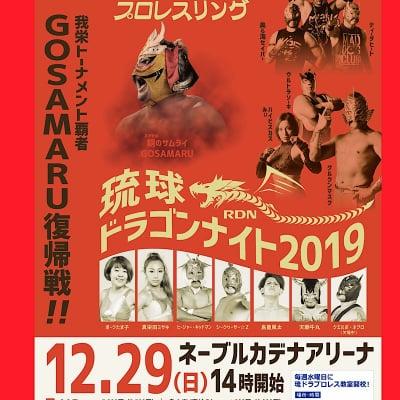 《12月29日》琉球ドラゴンナイト(SS席)