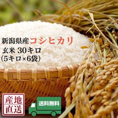 [送料無料]新潟県産直送100%コシヒカリ/玄米5キロ×6(30キロ)/新米5㎏×6袋