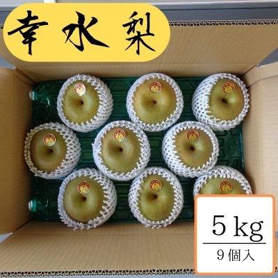 幸水/5kg箱9個入