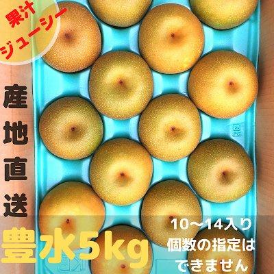 [果汁ジューシー]豊水5㎏/10~14個入り