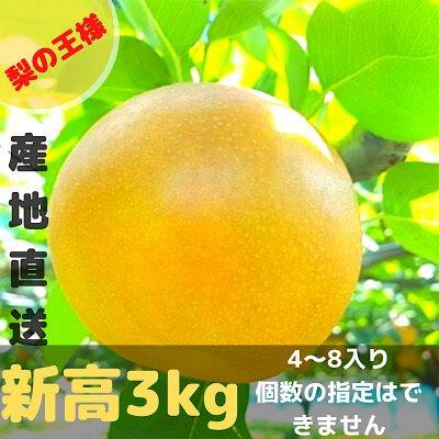 [梨の王様]新高3㎏/4~8個入り