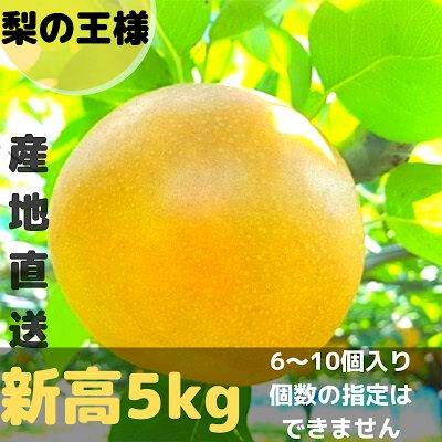 [梨の王様]新高5㎏/6~10個入り