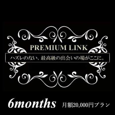 【月額2万円プラン/半年間】プレミアリンク まとめてお得な月会費
