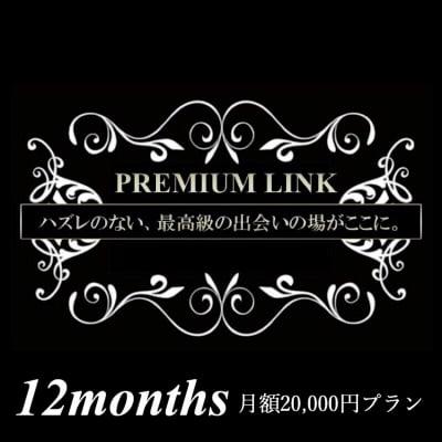 【月額2万円プラン/12ヶ月】プレミアリンク まとめてお得な月会費