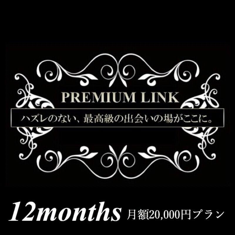 【月額2万円プラン/12ヶ月】プレミアリンク まとめてお得な月会費のイメージその1