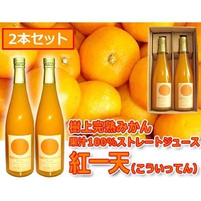 紅一天(こういってん) 600ml×2本セット 完熟みかん果汁100%ストレートジ...