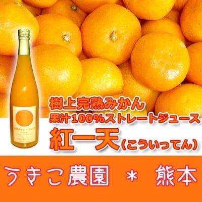 [まとめ買い専用]紅一天(こういってん) 600ml×12本!完熟みかん果汁100%ストレートジュース