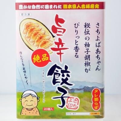 旨辛絶品餃子(20個入)