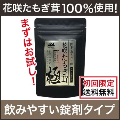 【初回限定・送料無料】花咲たもぎ茸錠剤 極-kiwami-