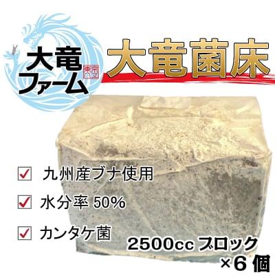 クワガタ専用 大竜菌床(2500ccブロック)6個セット