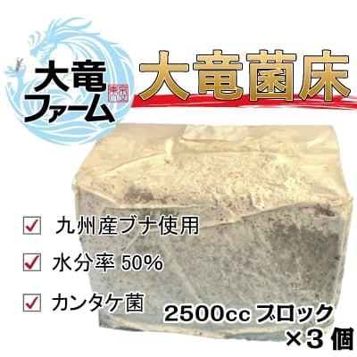 クワガタ専用 大竜菌床(2500ccブロック)3個セット