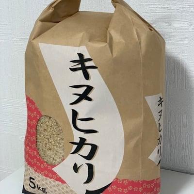 【3分つき米・10Kg】和歌山県産キヌヒカリ(一等米)産地直送便