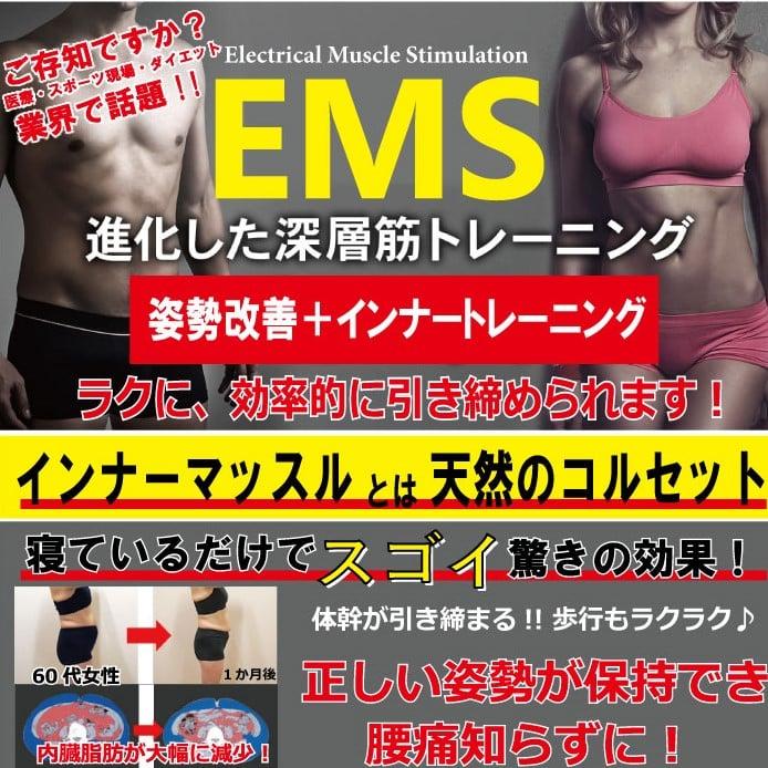 姿勢改善(肩こり、腰痛、ひざ痛など)+EMS(インナートレーニング)のイメージその1