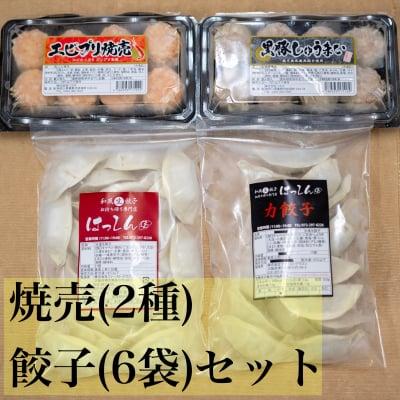 送料無料|冷凍餃子6袋 冷凍焼売2パック セット