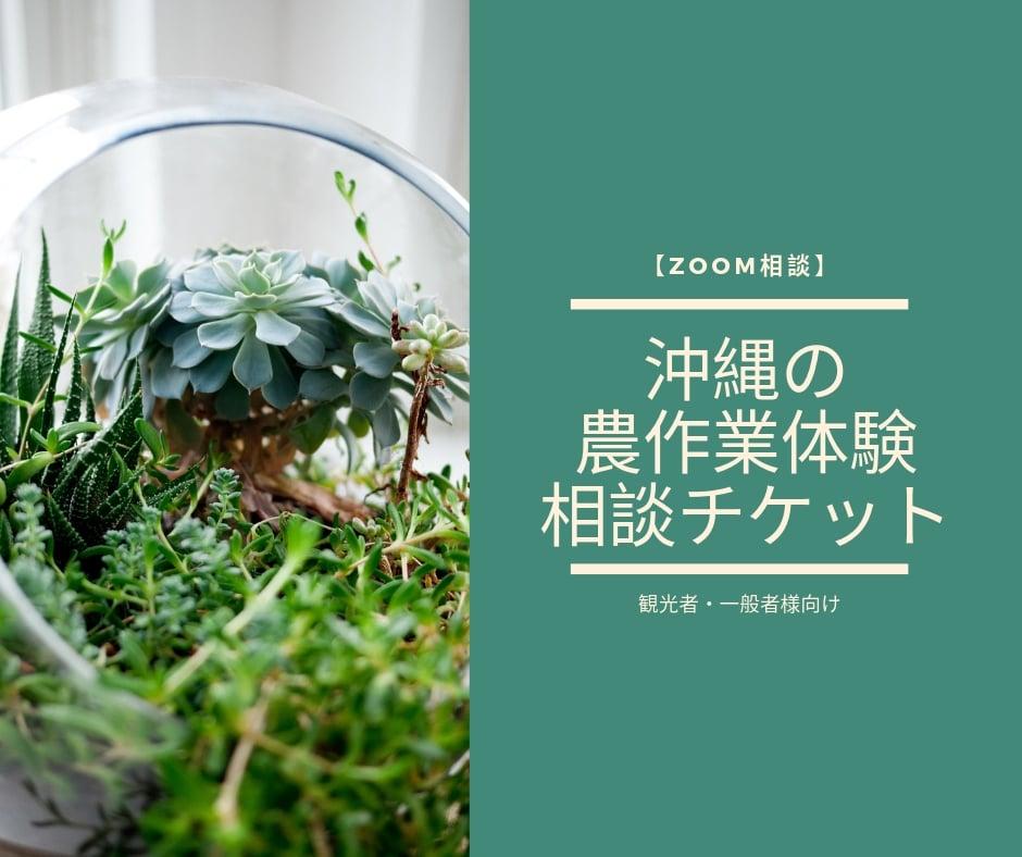 【ZOOM相談】沖縄の農作業体験の相談チケット(観光者・一般者様向け))のイメージその1