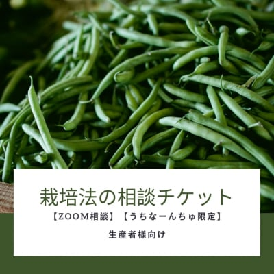 【ZOOM相談】【うちなーんちゅ限定】栽培法の相談チケット(生産者様向け)