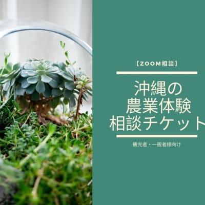 【ZOOM相談】沖縄の農業体験の相談チケット(観光者・一般者様向け)