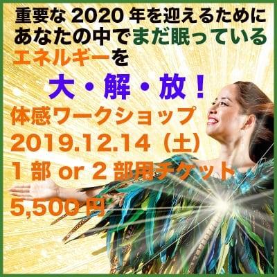 【現地参加のみ】重要な2020年を迎えるためのエネルギー大解放!体感イベント:12/14(土)【1部】