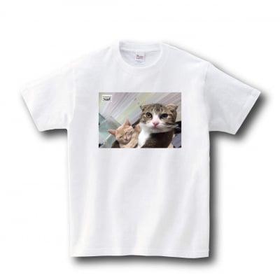 7月中旬発送  Tシャツ アポロくん