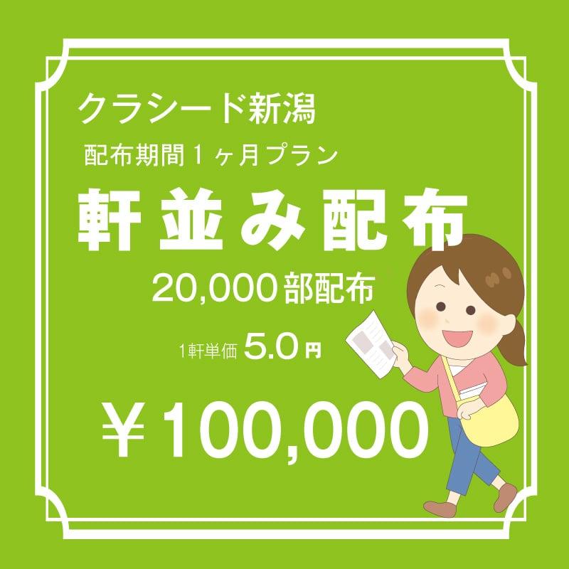 長岡市内 軒並み 20,000枚 配布期間一ケ月プラン のイメージその1