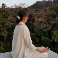 """【はじめての瞑想体験90分】 実践して感じてみる!マインドフルネス瞑想/充実満足の90分/女性限定(男性条件付き可)/ 個別指導/神奈川県逗子でマインドフルネス瞑想なら""""びわの寺""""/瞑想でリセット&リフレッシュ/ライフスタイル全般を改善するプライベートレッスン"""