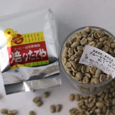 生豆 ブルーマウンテン NO.1 100g