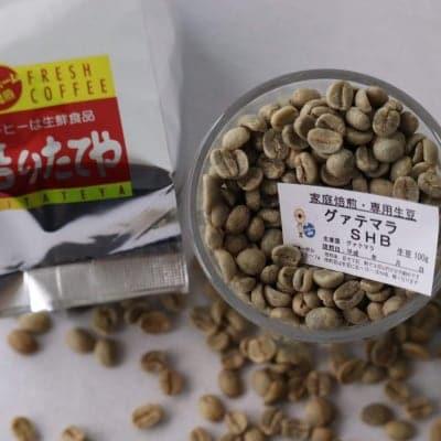 生豆 グァテマラ SHB 100g