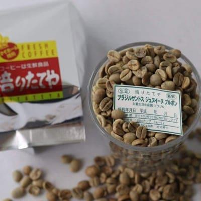 生豆 ブラジルサントス ジュヌイーヌ ブルボン 100g