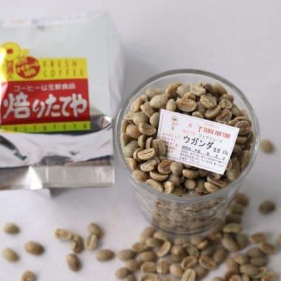 生豆 ウガンダ フェアトレード 100g