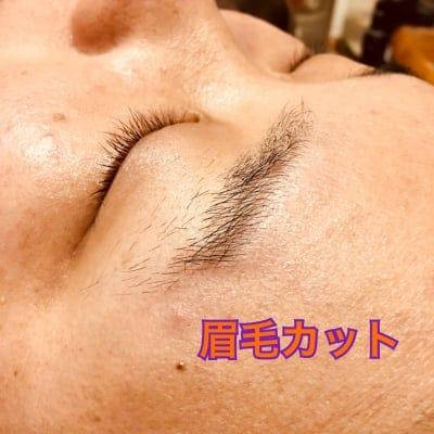 眉毛カット オプショナルメニュー★クレジット払い専用チケット★