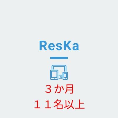 Reska(担当者11名以上) 3か月分