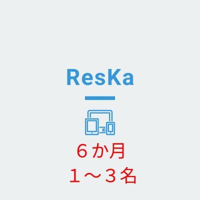 Reska(担当者1〜3名) 6か月分