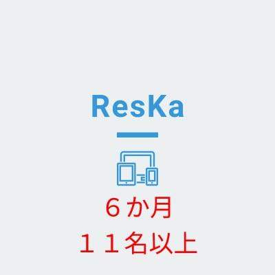 ResKa(担当者11名以上) 6か月分