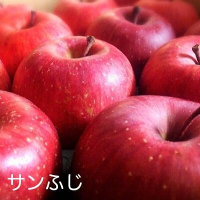 【予約】家庭用 信州 飯綱産 自然農法・減農薬栽培サンふじ5kg(14~18玉)