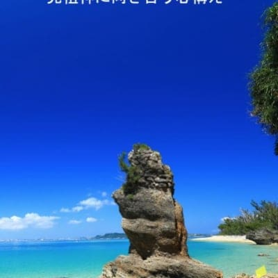 天無神人講演会「先祖神に向き合う心構え」DVD(国内送料無料)