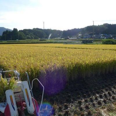 <復興応援!>残り1袋!福島県田村市産 特別栽培米「ひとめぼれ」30kg(精米済み)
