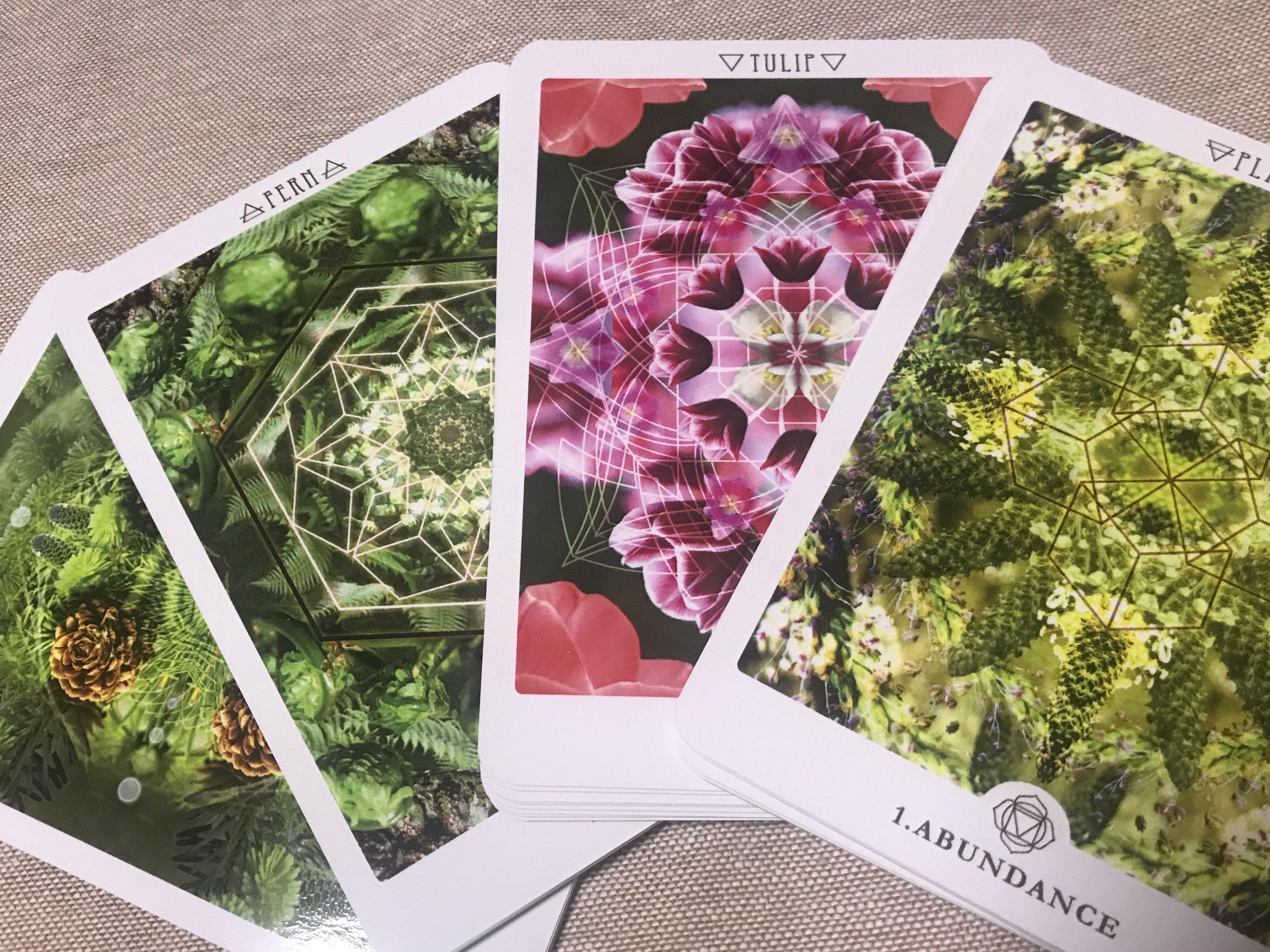 「花曼荼羅®カード鑑定」「花曼荼羅®塗り絵」セットチケットのイメージその3