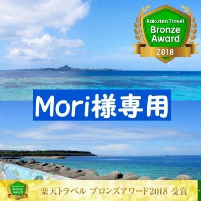 【Mori様専用】【現地払いのみ】【宿泊チケット】