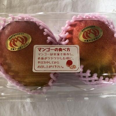 【店頭払い限定】沖縄宜野座村産完熟マンゴー(パック)