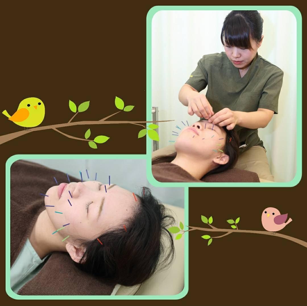 美容小顔リラクゼーション鍼灸チケットのイメージその4