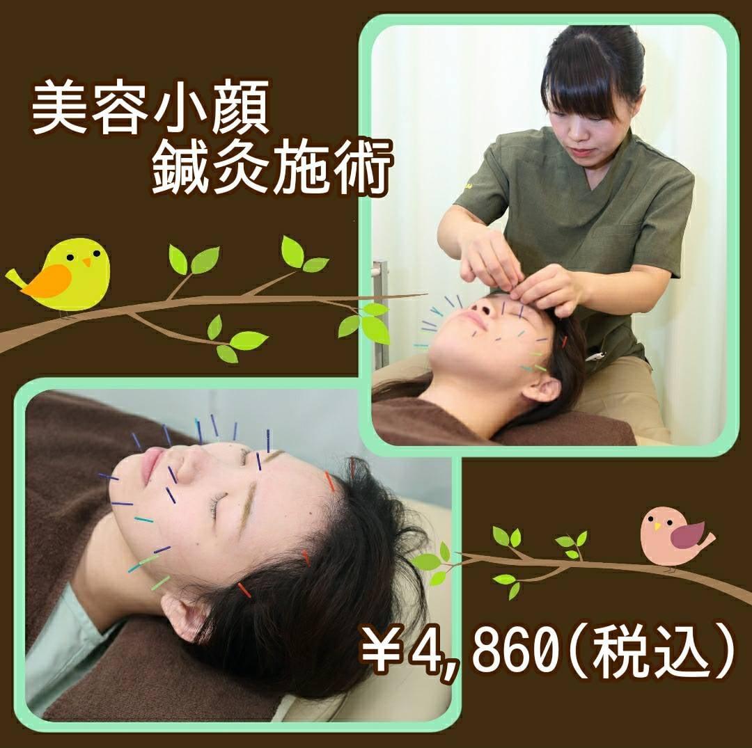 美容小顔リラクゼーション鍼灸チケットのイメージその1