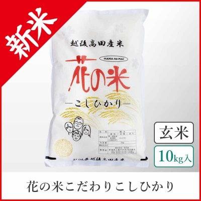 【本州送料込】こだわりこしひかり《玄米10kg》