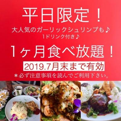 「Hawaiian Cafe Dining KOA」お得なウェブチケット 2019年7月末まで有効・平日限定1か月定額制食べ放題チケット15980円(定期便13980円)